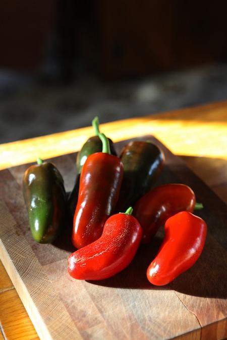 indoor peppers