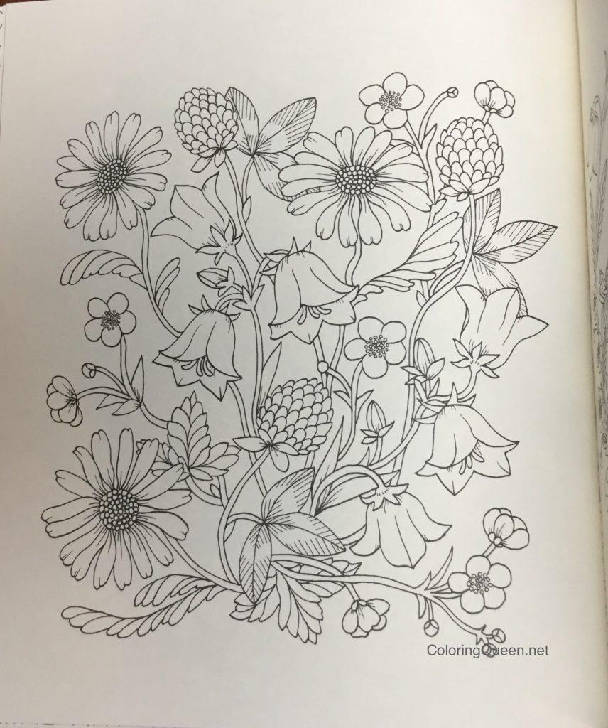 483807330 twilight garden coloring book aka blomster mandala - Garden Coloring Book