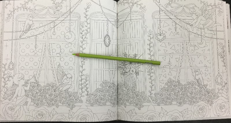 Flowers and birds Japanese coloring book14 800x600 - Flowers & Birds Coloring Book Review