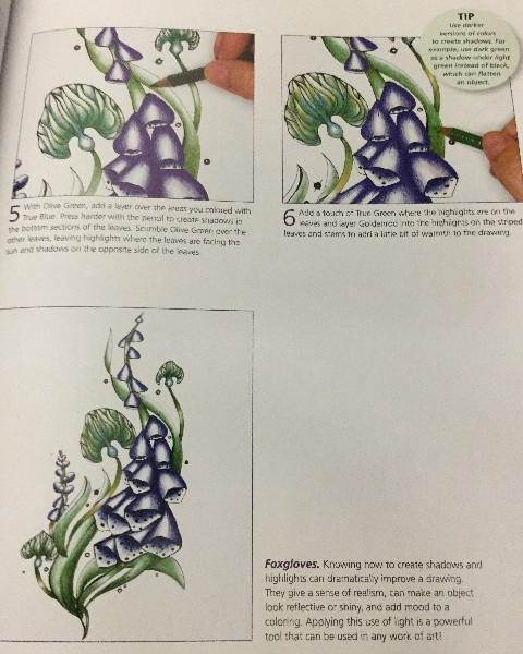 Color Workshop Rachel Reinert 15 800x600 - Color Workshop - Step by Step Guide - Coloring Book Review