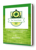 The thrival guide 3dv2