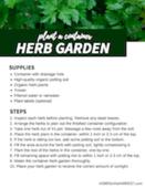 Container_herb_garden_