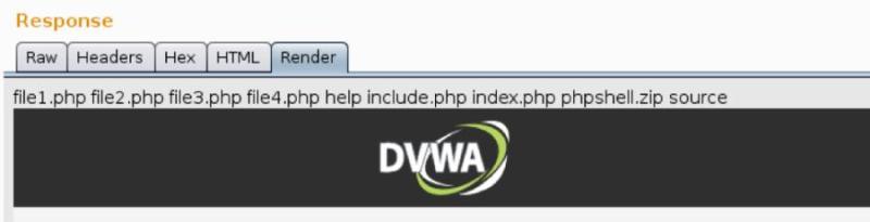 "The output from the command ""ls"" is rendered above the DVWA banner"