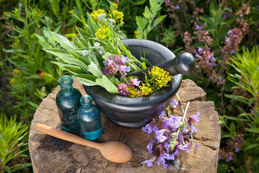 Mortar with healing herbs and sage, bottles of essential oil in garden. Herbal medicine.