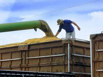 Produtor em cima de carreta de soja