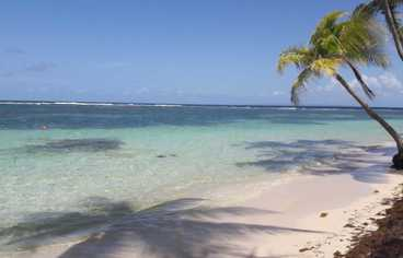 find caravelle beach guadeloupe thanks