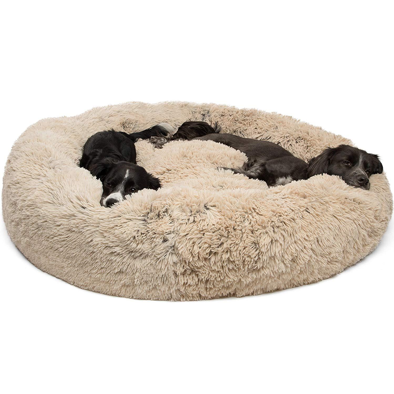 large fluffy dog bed