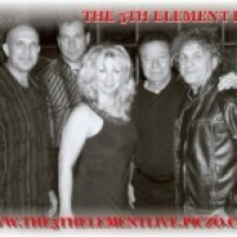 Hire The 5th Element Band Wedding Band In Carol Stream