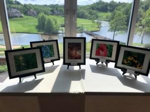 Priyas-Exhibition-Pics-21-May-2018