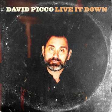 David Picco - Live It Down