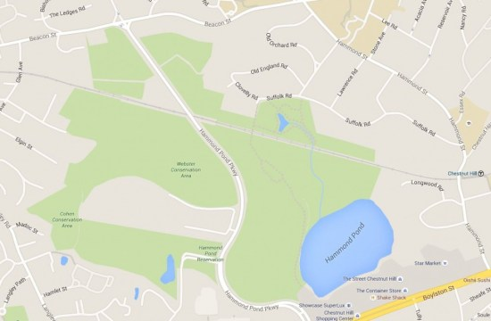 LTE: Boston College's Purchase Of Land By Hammond Pond