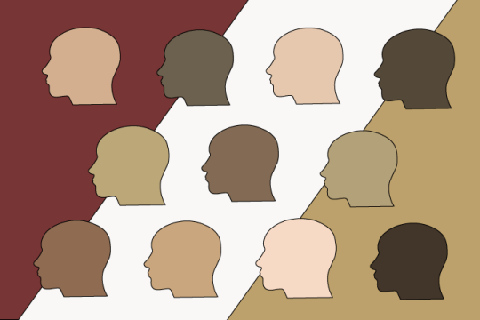 A New Definition of Diversity