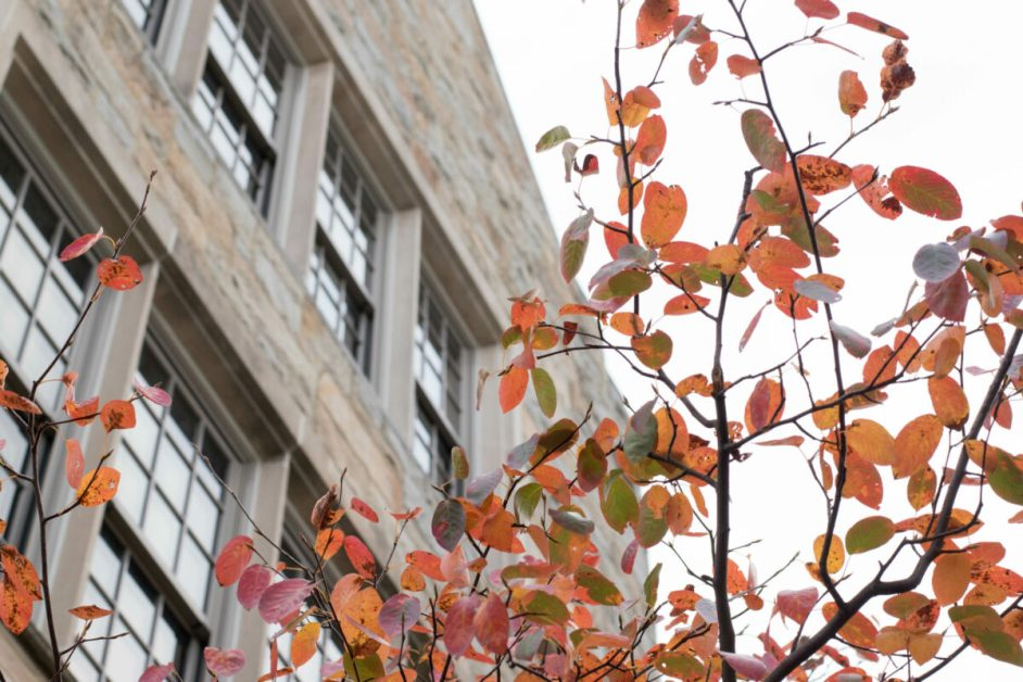 Honor System Raises Questions About Academic Integrity