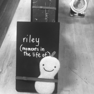 Riley's Book Display