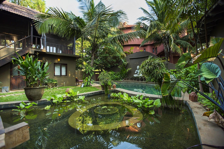Koi Ponds And Gardens