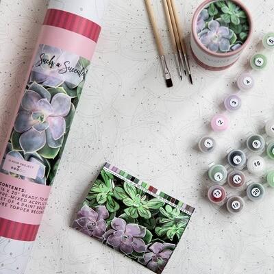 Succulents Adult Paint-By-Number-Kit
