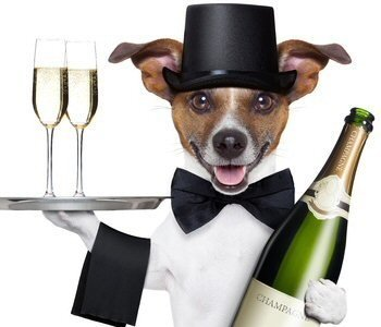 New Years Eve Black & White Ball 2 Dance Floors 00006