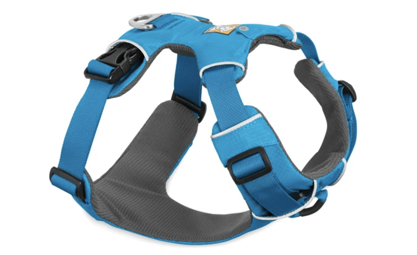 National Dog Day Save On These 5 Gear Items For Your Pup