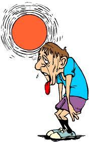 Too Hot to Trot! Norwalk Race is Rescheduled!