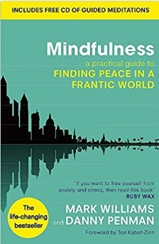 Possibly The Best Mindfulness Book