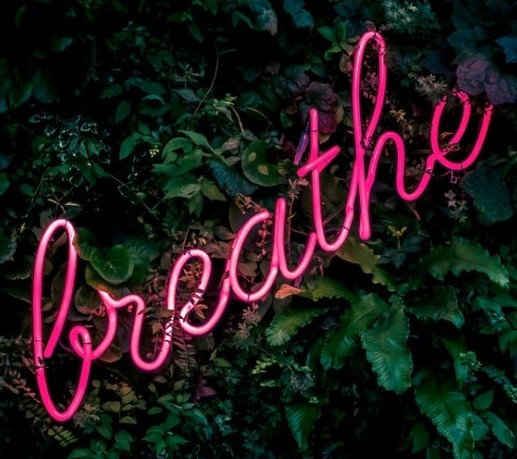 The word breathe in neon pink with a backdrop of an hedge - Tips To Relieve Anxiety