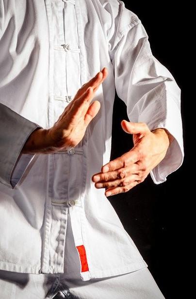 The qigong master