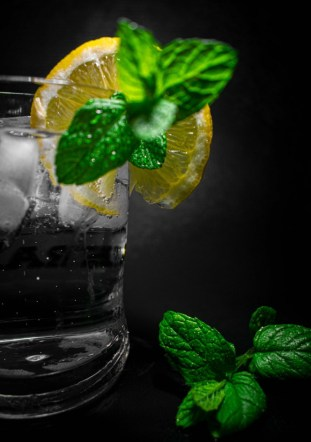 glass of water with lemon and herbs