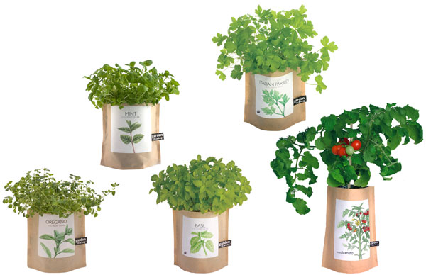 Image Result For How To Grow An Herb Garden On A Balcony