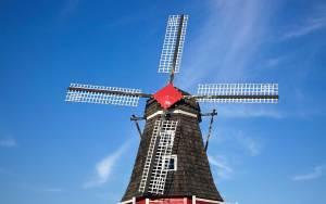 Austauschjahr in Holland, beste Qualität, beste Preise