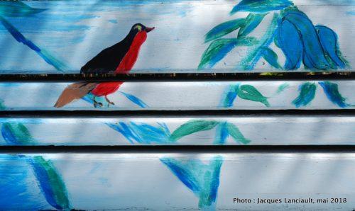 Banc bleu pour aux oiseaux rouges, Montréal, Québec