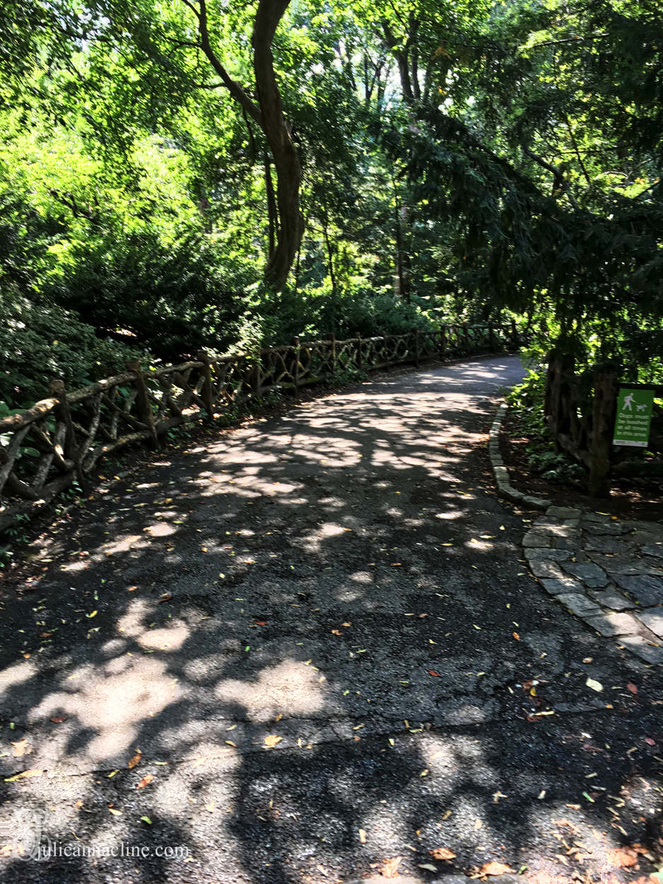 New York City Central Park in September 2017