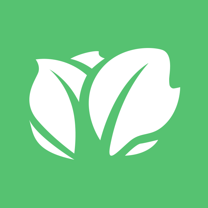 Seo Archives Grow With Kabbage