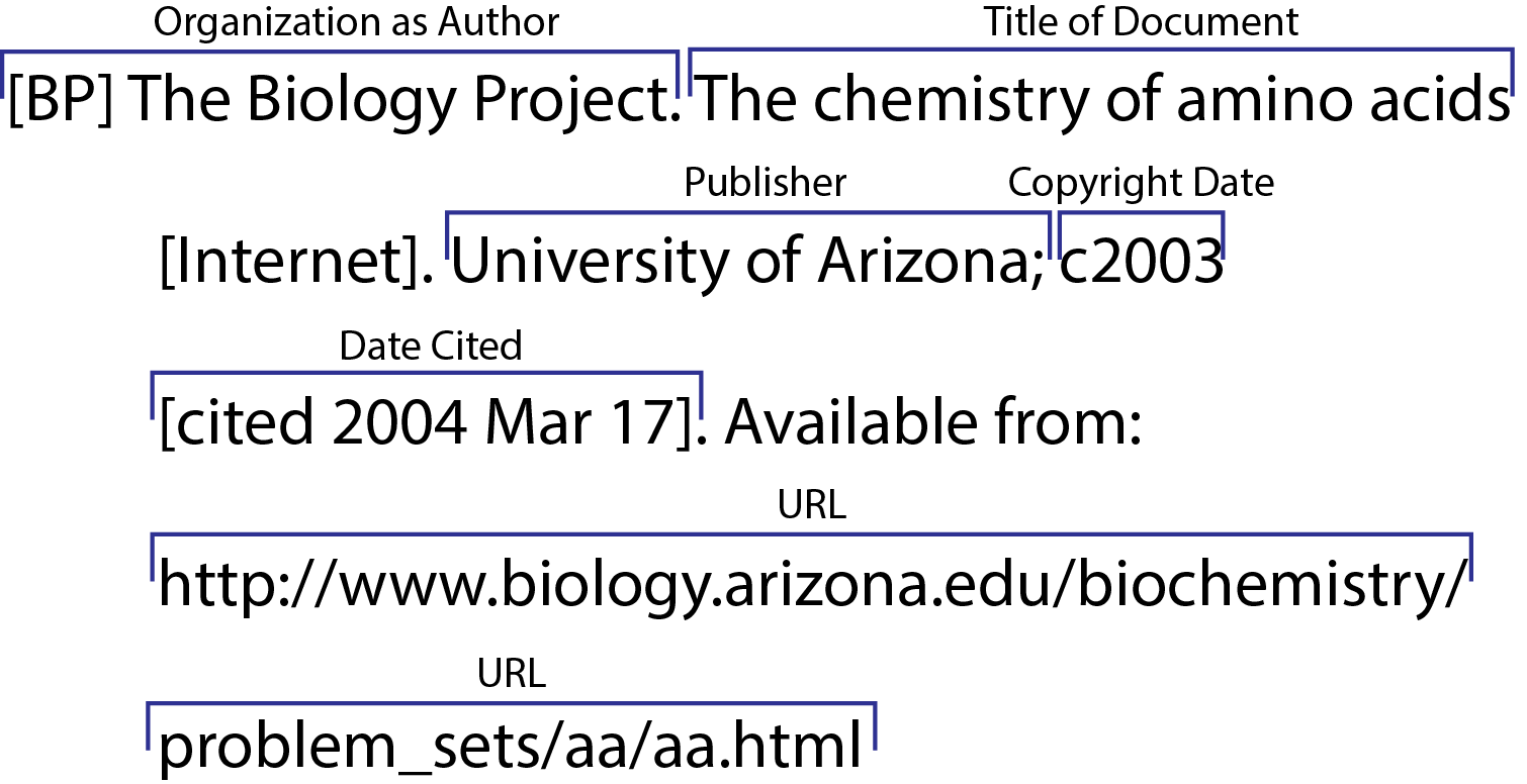 How To Write In Text Citations Apa For Websites With No