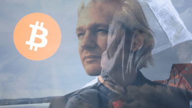 wikileaks-public-donation-address-receives-th-bitcoin