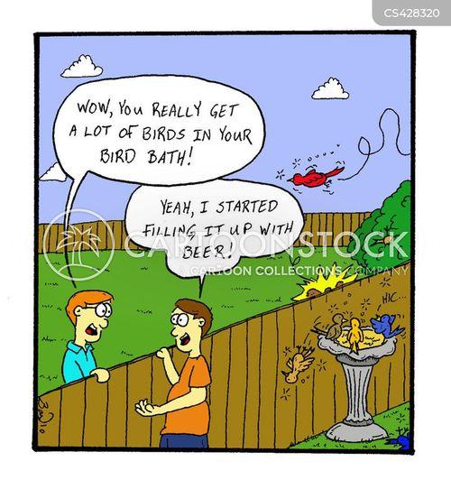 Bird Bath Garden Cartoon