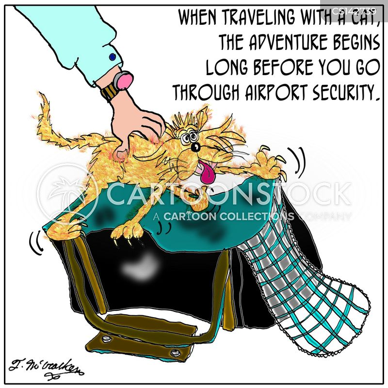 Cat Carrier Cartoons And Comics Funny Pictures From Cartoonstock