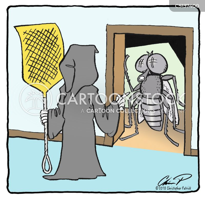 Fly Swatters Cartoons And Comics Funny Pictures From Cartoonstock