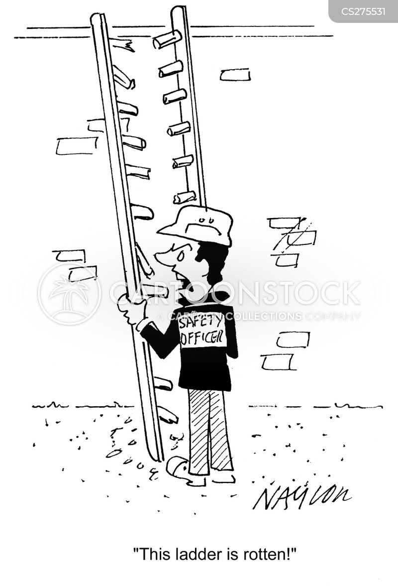 Funny Pictures Ladder Safety