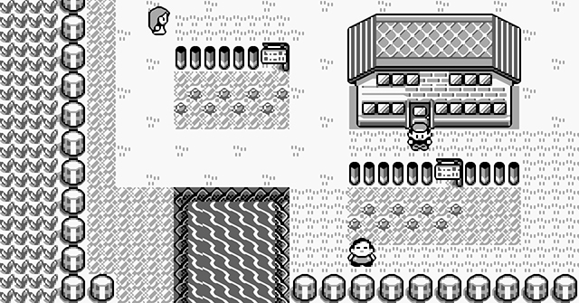 Pokemon Red Blue Gameplay