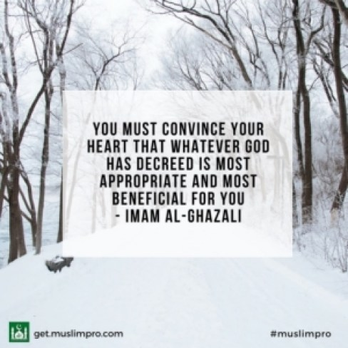 You must convince your heart that whatever God has decreed is most appropriate and most beneficial for you - Imam Al-Ghazali
