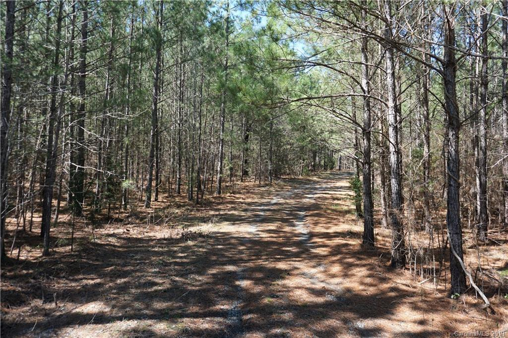 Property for sale at 115 AC Rachael Road, York,  South Carolina 29745