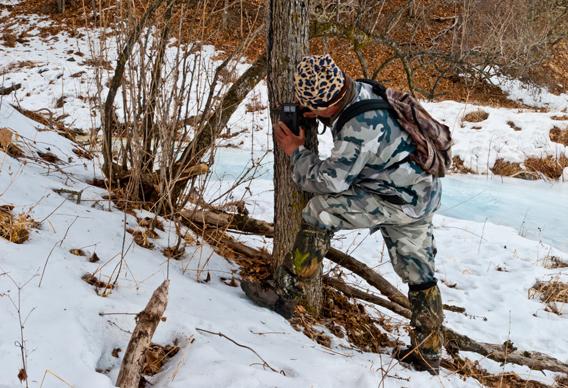 Setting up a camera trap in Lazovsky Nature Reserve. Photo courtesy of: ZSL.