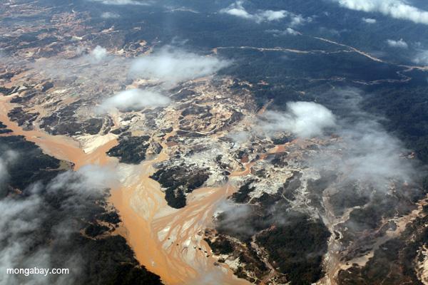 Types Environmental Damage