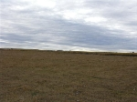 Main Photo: : Rural Leduc County Rural Land/Vacant Lot for sale : MLS® # E3394861