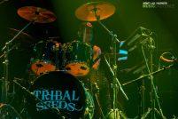 TribalSeedsVegas031217mjph0toME41