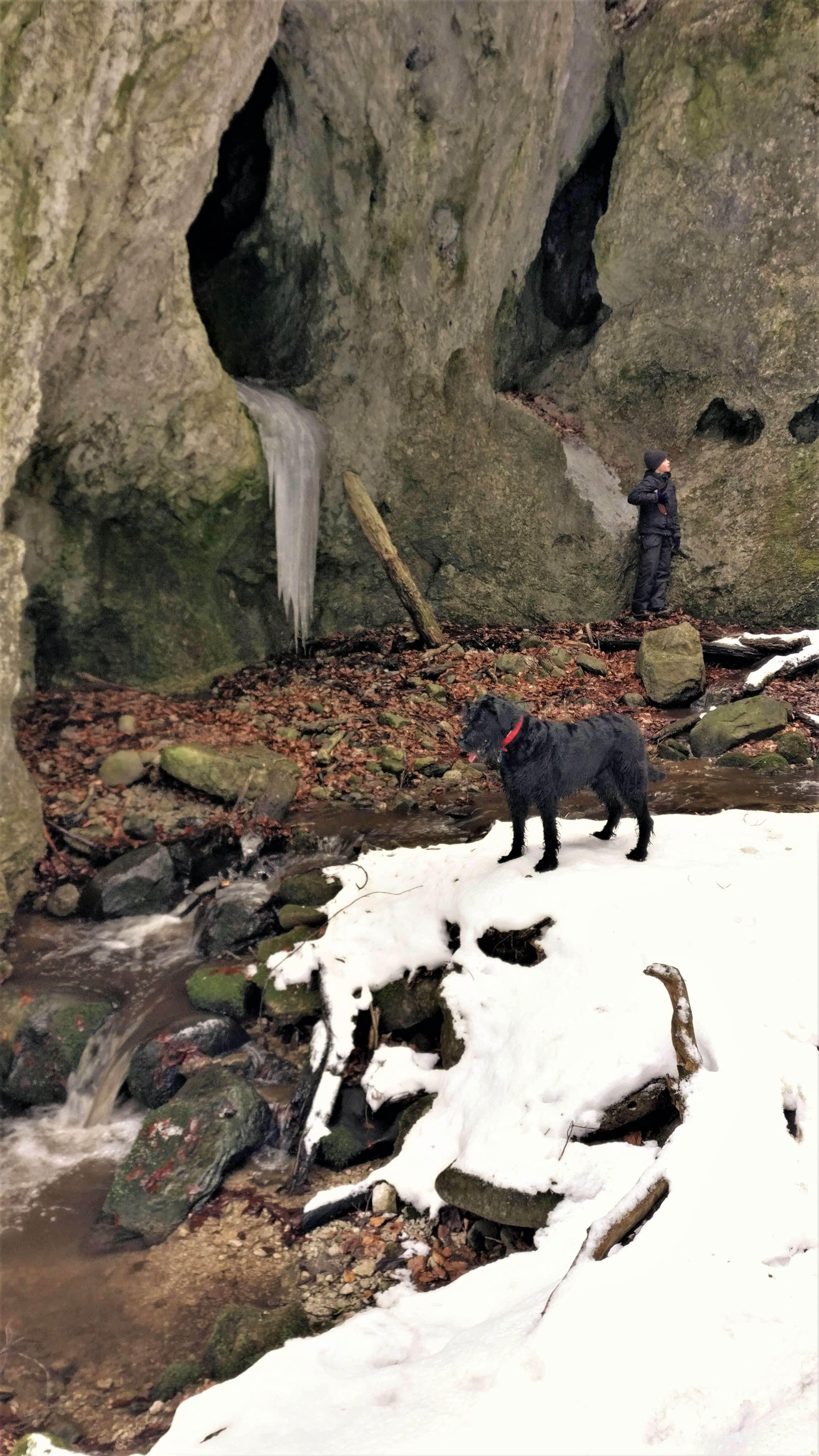 Max and Bona take in the view at a place where the canyon widens out.