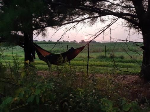 New hammock