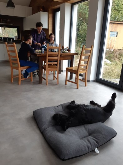 Relaxing in our new dining room.