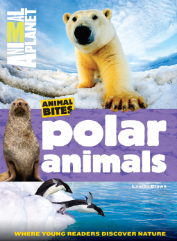 Book Cover for Animal Planet Polar Animals Issue (Animal Bites #2)