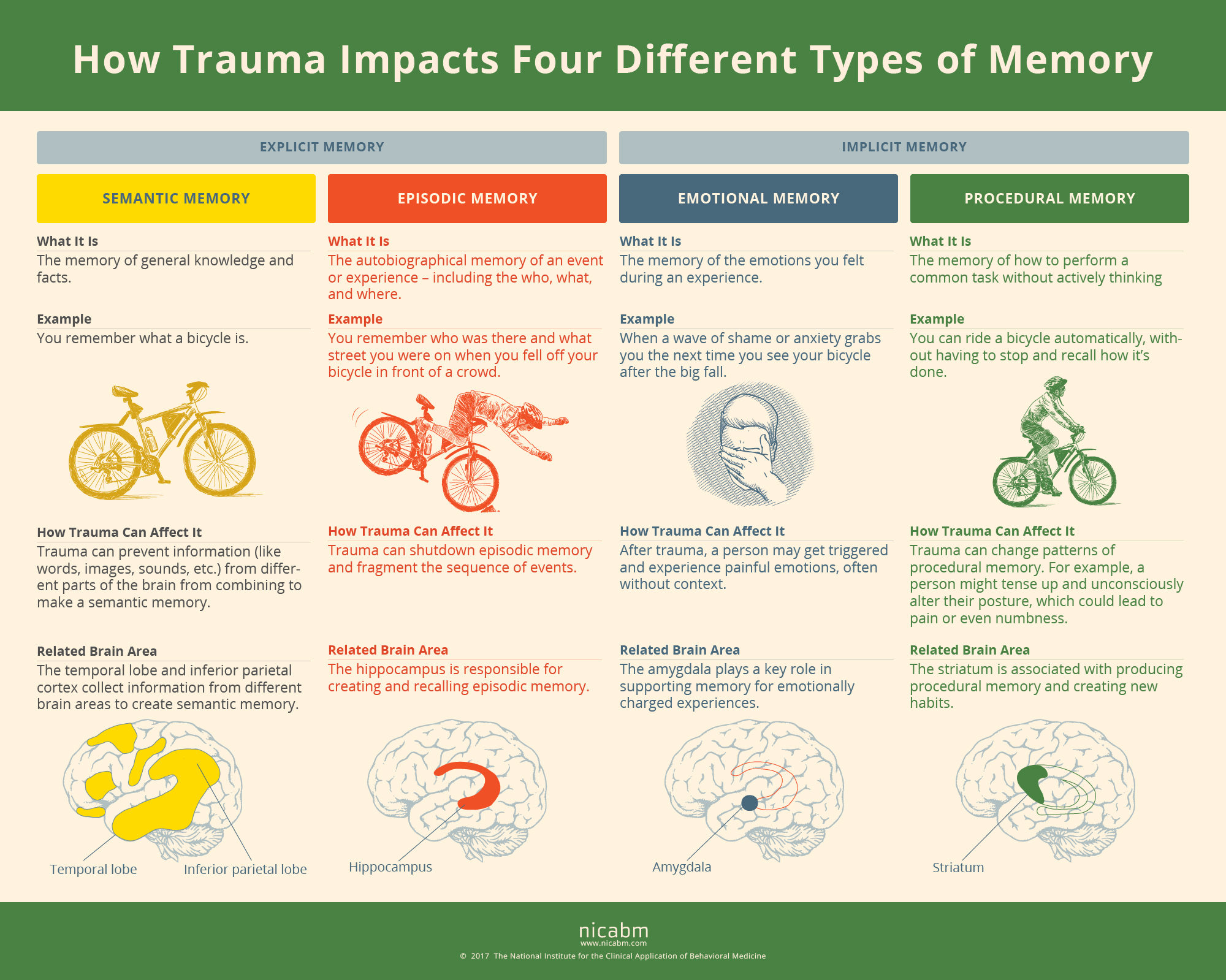 How Trauma Can Impact Four Types Of Memory Infographic